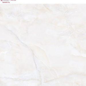 CATALAN 60X60 6069 (Bóng kiếng)
