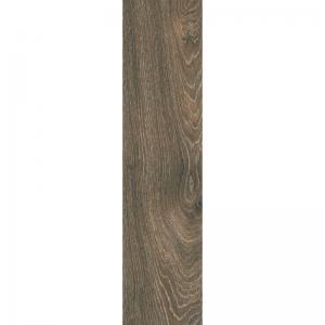 Gạch Taicera 15×60 GC921