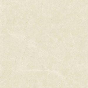Gạch Taicera 60×60 P67443N
