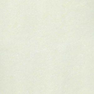 Gạch Taicera 60×60 P67702N