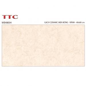 Gạch TTC 30×60 WB4804