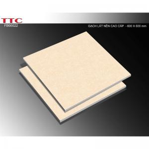 Gạch TTC 60×60 FB66022 hãng TTC