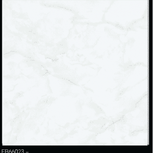 Gạch TTC 60×60 FB66023