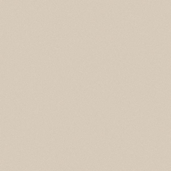 Gạch Viglacera 60×60 TS5-601