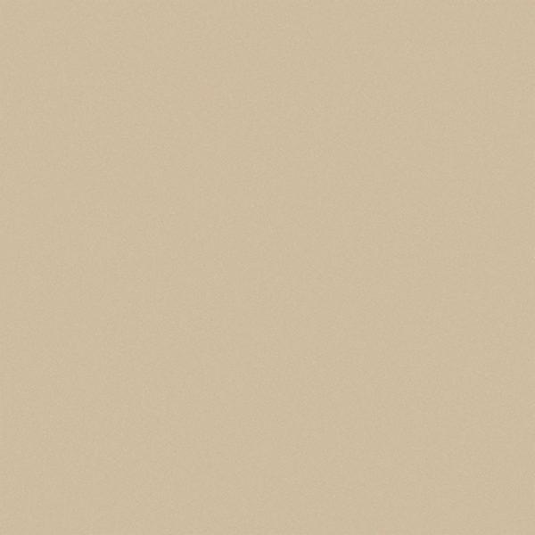 Gạch Viglacera 60×60 TS5-602